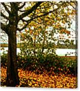 Passage Through The Fall Canvas Print