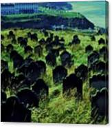 Passed Or Past Residents Of Whitby, Yorkshire Canvas Print