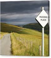 Passing Place Canvas Print