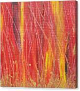 Passion Fire Canvas Print