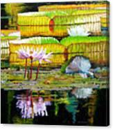 Passion for Color Canvas Print