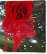 Passion In The Rain Canvas Print