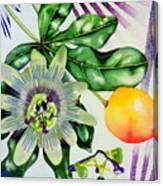 Passion In The Tropics Canvas Print