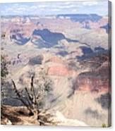 Pastel Canyon Canvas Print