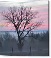 Pastel Fog Canvas Print