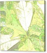Pastel Green Nature Canvas Print