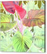 Pastel Hearts Canvas Print