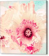 Pastell Poppy Canvas Print