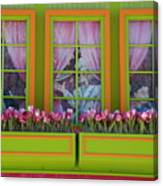 Pastle Windows Canvas Print