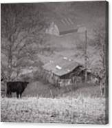Pasture Field And Barns Canvas Print