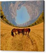 Pasture Of Another World Canvas Print