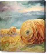 Pasture Ornament Canvas Print