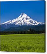 Pasture View Of Mt. Hood Canvas Print