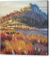 Pataua Canvas Print