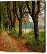 Path Along The Horses Meadow On The Farm Lovedayvale L B Canvas Print