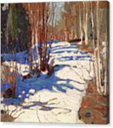Path Behind Mowat Lodge Canvas Print