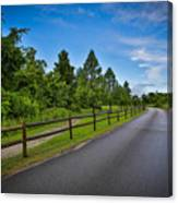 Path - Color Canvas Print
