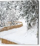 Path In Snow Canvas Print