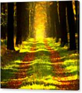 Path In The Forest 715 - Painting Canvas Print