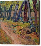 Path In The Garden Of The Asylum, By Vincent Van Gogh, 1889, Kro Canvas Print