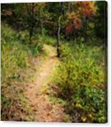 Path In The Prairie Canvas Print