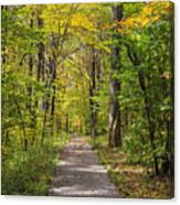 Path In The Woods During Fall Leaf Season Canvas Print