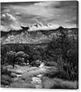 Path Of Contradiction Canvas Print