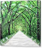 Path Of Life Canvas Print