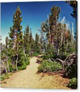 Path On Top Of Mt. Howard, Wallowa Or Canvas Print
