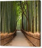 Path Through A Bamboo Grove In Kyoto Canvas Print