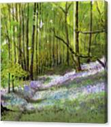 Path Through Bluebell Wood Canvas Print