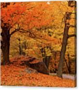 Path Through New England Fall Foliage Canvas Print