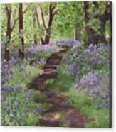 Path Through The Bluebells Canvas Print