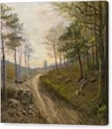 Path Through The Forest Canvas Print