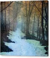 Path Through The Woods In Winter At Sunset Canvas Print