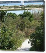 Path To Edgartown Lighthouse Canvas Print