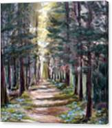 Path To Enlightenment Canvas Print
