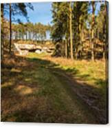 Path To St Cuthbert's Cave Canvas Print