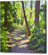 Path To The Lake Canvas Print