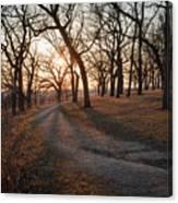 Path To The Sun Canvas Print
