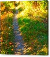 Path To Unknown Canvas Print