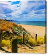 Path To Whiritoa Beach, Coromandel Canvas Print