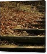 Paths Of The Seasons Canvas Print