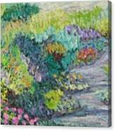 Pathway Of Flowers Canvas Print