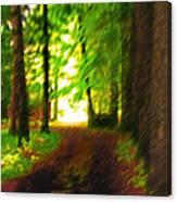 Pathway To Light Canvas Print