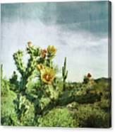 Patina Green Desert Bloom Canvas Print
