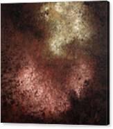 Patina Canvas Print