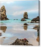 Patrick And Friends Visit Cannon Beach Canvas Print