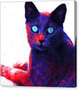 Patriotic Cat Canvas Print