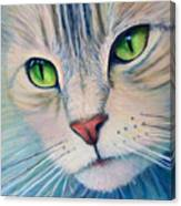 Pats Cat Canvas Print